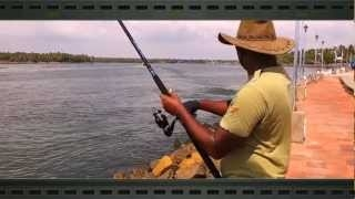 How To Cast Halco Twisty Spinning Metal Lure Setup in Estuary To Catch Threadfin Salmon