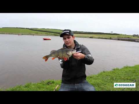 Ecogear Para max Perch Fishing with Tim Harrison экогир видео ECOGEAR PARAMAX ecogear paramax 2